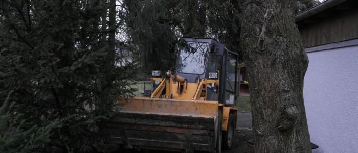 Bagger - für - Transport - von - zersägten - Baumstämmen