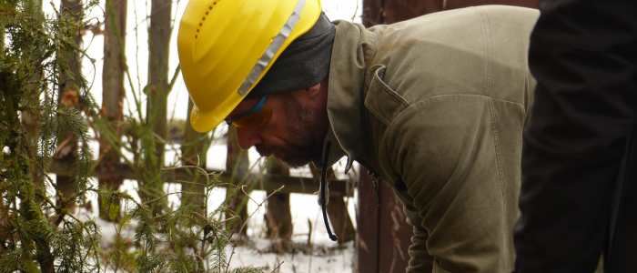 Baumpfleger - mit - Helm