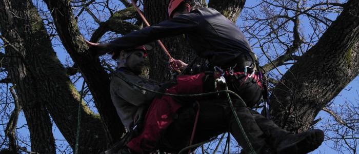 Kletterer - seilt - anderen - Kletterer - ab