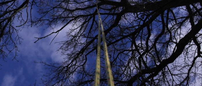 Seilklettertechnik - im - Einsatz - Seil