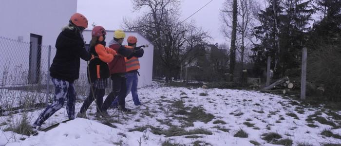 Baumfällung - Team