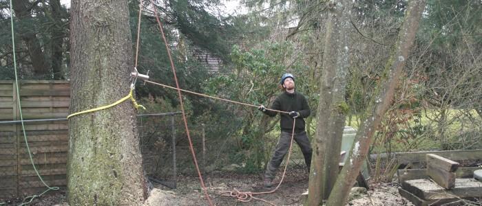 Sicherung - Seilklettertechnik