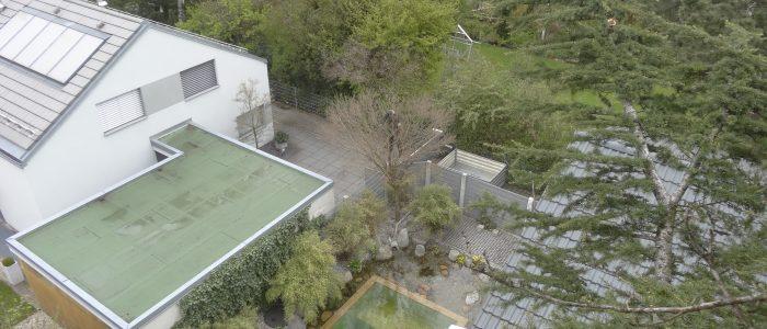 Vogelperspektive auf Baumpfleger
