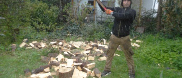 Wilhelm II beim Holzhacken