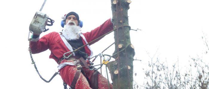 Heiliger Nikolaus fällt Edeltanne