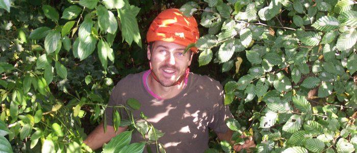 Baumteam Kletterer