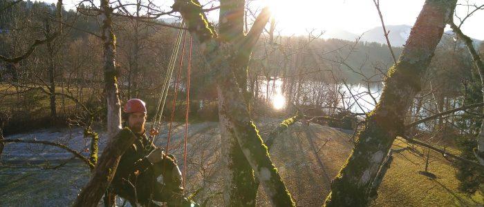 Einsatz Seilklettertechnik